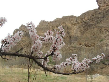 روستای کارده مشهد
