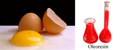 red-egg.jpg